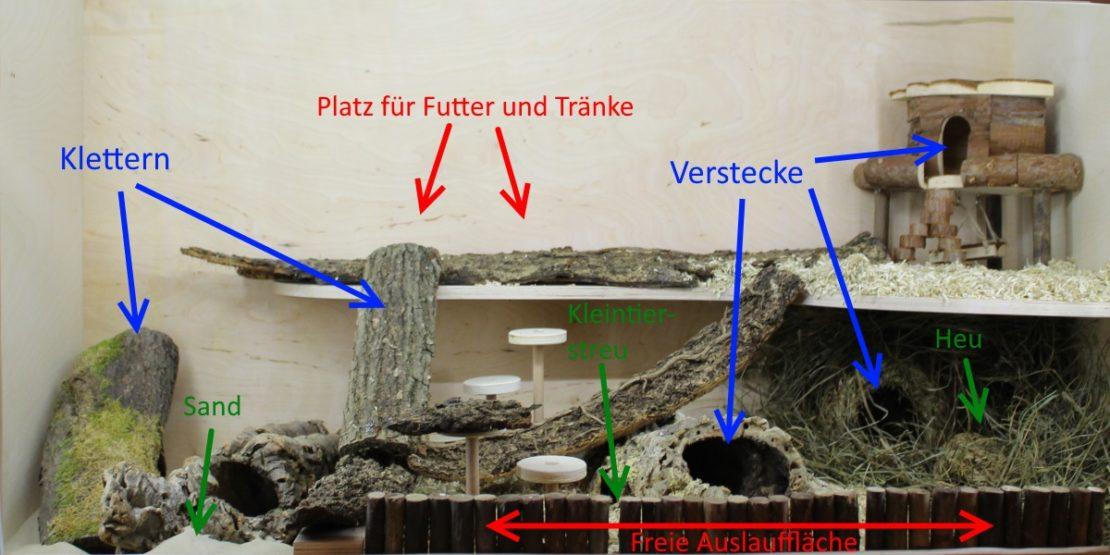 Käfigstruktur - Bereiche und Aufteilung