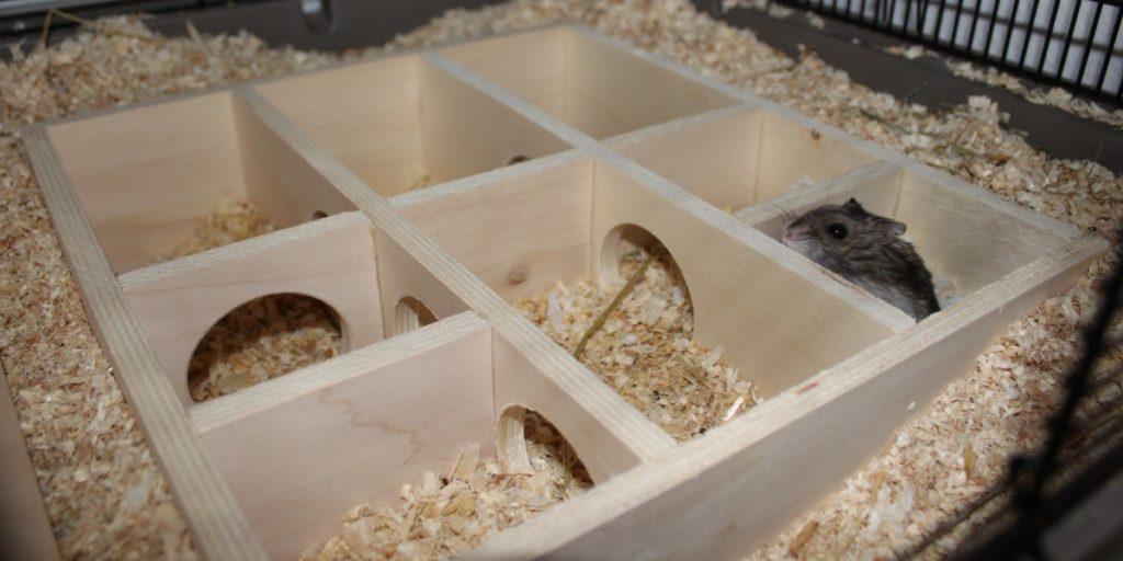 Mehrkammerhaus - Ersatz für mehrere Hamsterhäuser