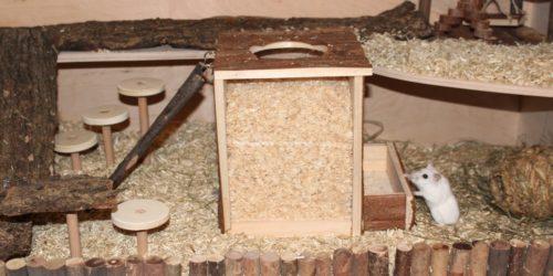 Der Buddelturm für den Hamster