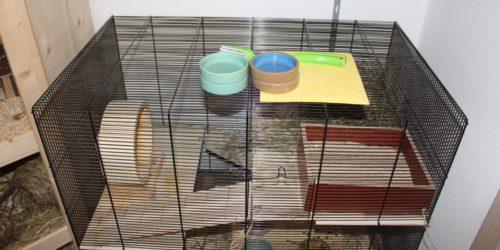 Die Hamsterkäfig Reinigung