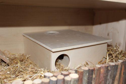 Unbedenkliche Materialien am Hamsterkäfig
