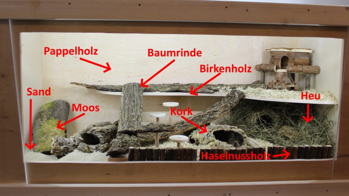 Naturmaterialien machen Hamsterkäfig artgerecht