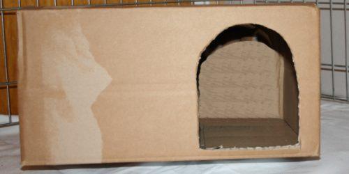 Hamsterspielzeug selber bauen