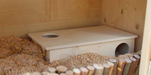 Hamsterhaus mit 3 Kammern